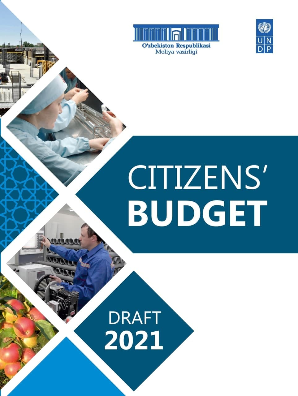 "The following publication of  the ""Citizens' Budget"", dedicated to the draft of the State budget for 2021"